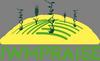 IWMPRAISE-logo_rid