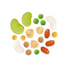 icona-leguminose-servizi-homepage-horta