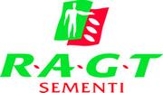 RAGT Sementi_vertical_rid