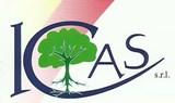 ICAS_logo