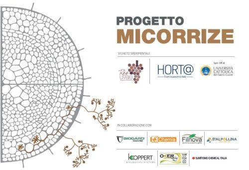 Progetto Micorrize