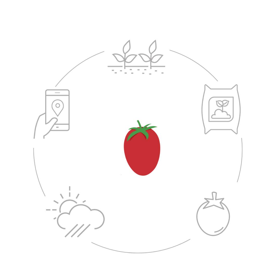 Funzionamento pomodoro.net