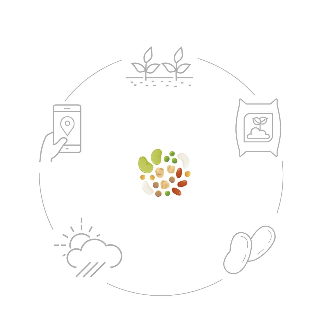 Funzionamento legumi.net