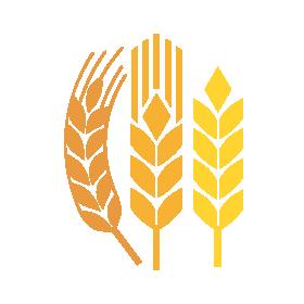 icona-cereali-servizi-homepage-horta_image